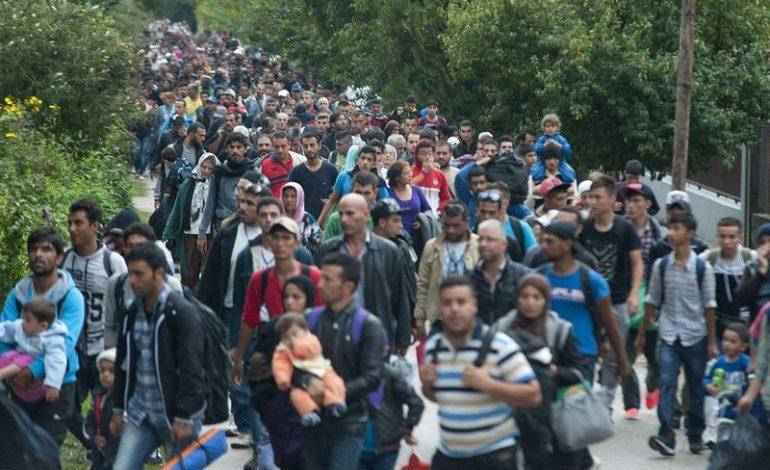 Тибқи қонуни нав Венгрия паноҳандагонро боздошт мекунад